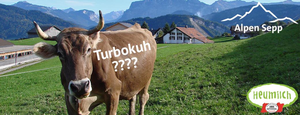 Turbokuh