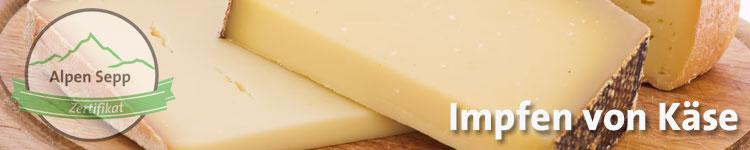 Impfen von Käse im Käse Wiki vom Alpen Sepp