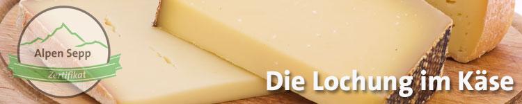 Die Lochung im Käse im Käse Wiki vom Alpen Sepp