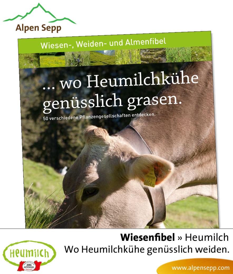 Fibel - Lesebuch: Wo heumilchkuehe genuesslich grasen